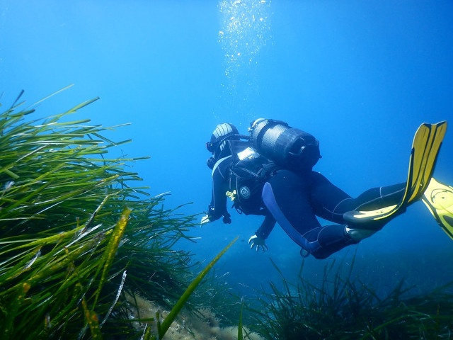 L'euphorie des bulles et les joies de la plongée sous-marine